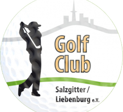 Logo-Salzgitter